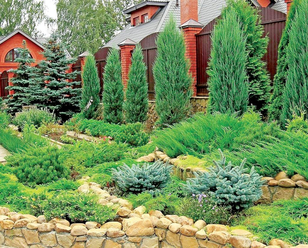 Идеальный сад без садовника? Легко!